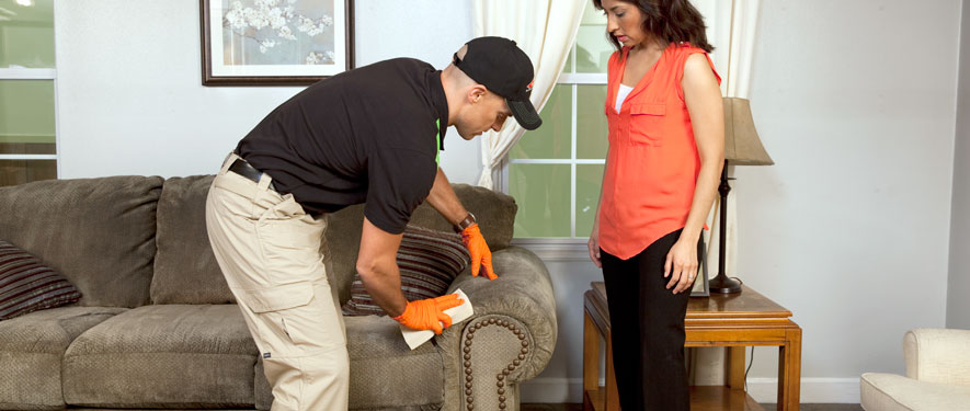 Abington, PA carpet upholstery cleaning